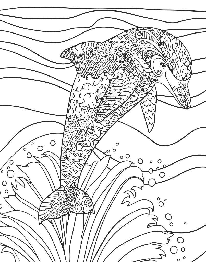 Delfin wyskakujący z wody