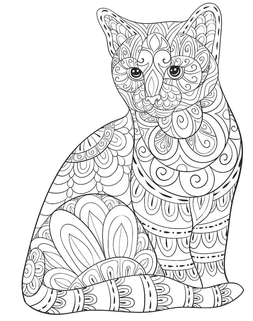 Kolorowanka mandala z kotem dla dorosłych