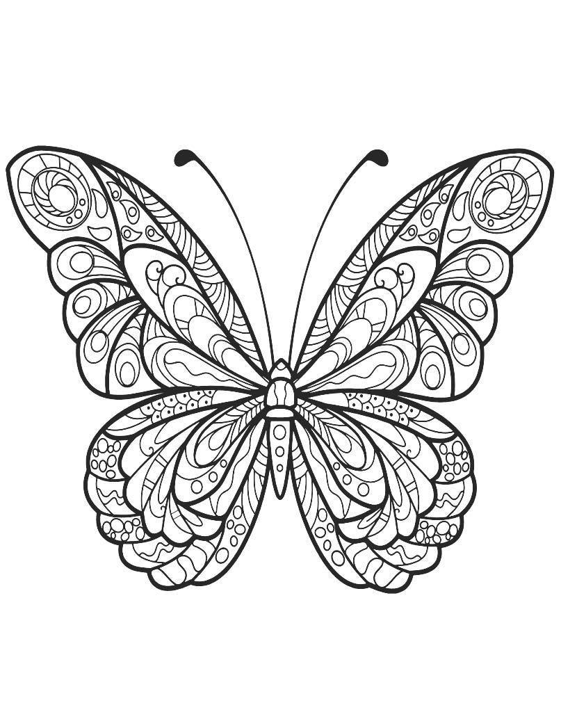 Mandala z motylem do darmowego wydruku