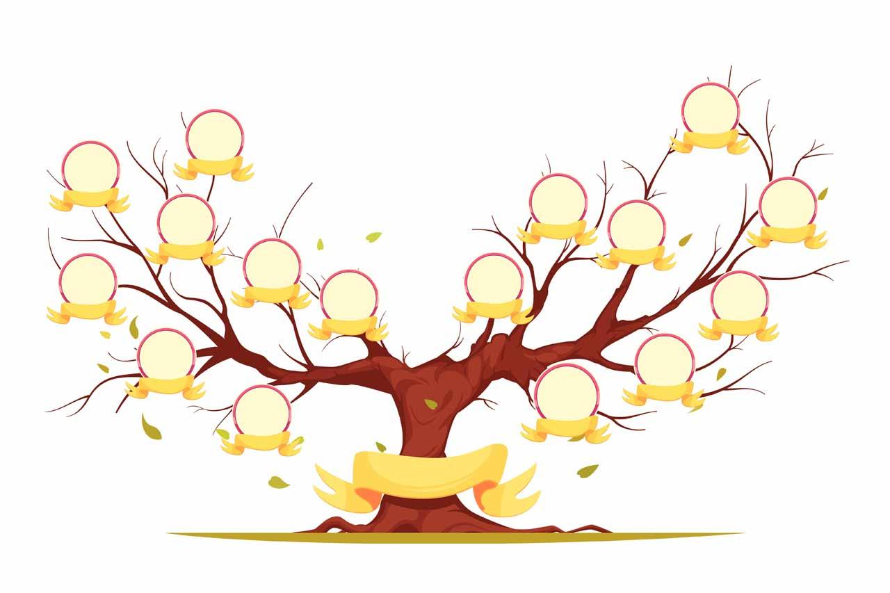Drzewo genealogiczne szablony i wzory