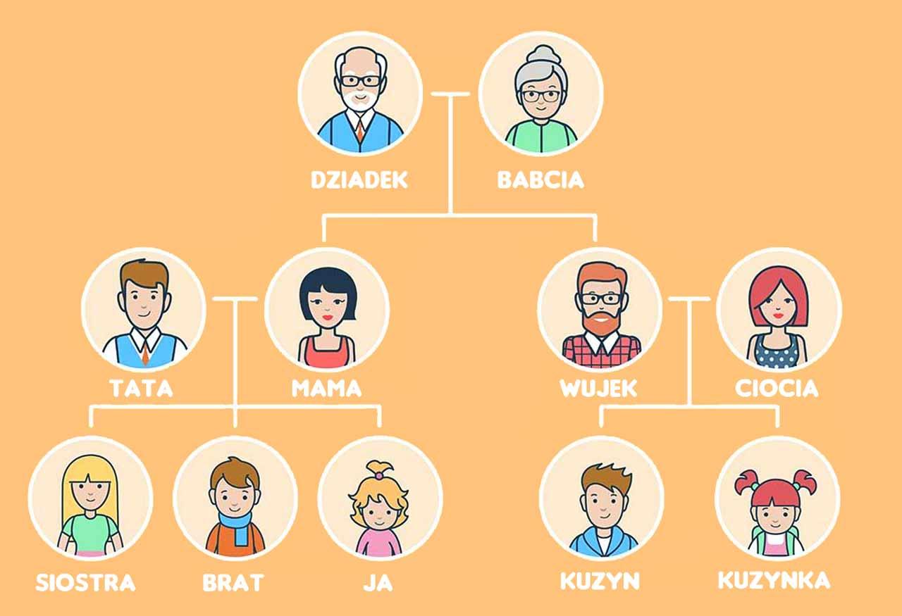 Jak powinno wyglądać drzewo genealogiczne?