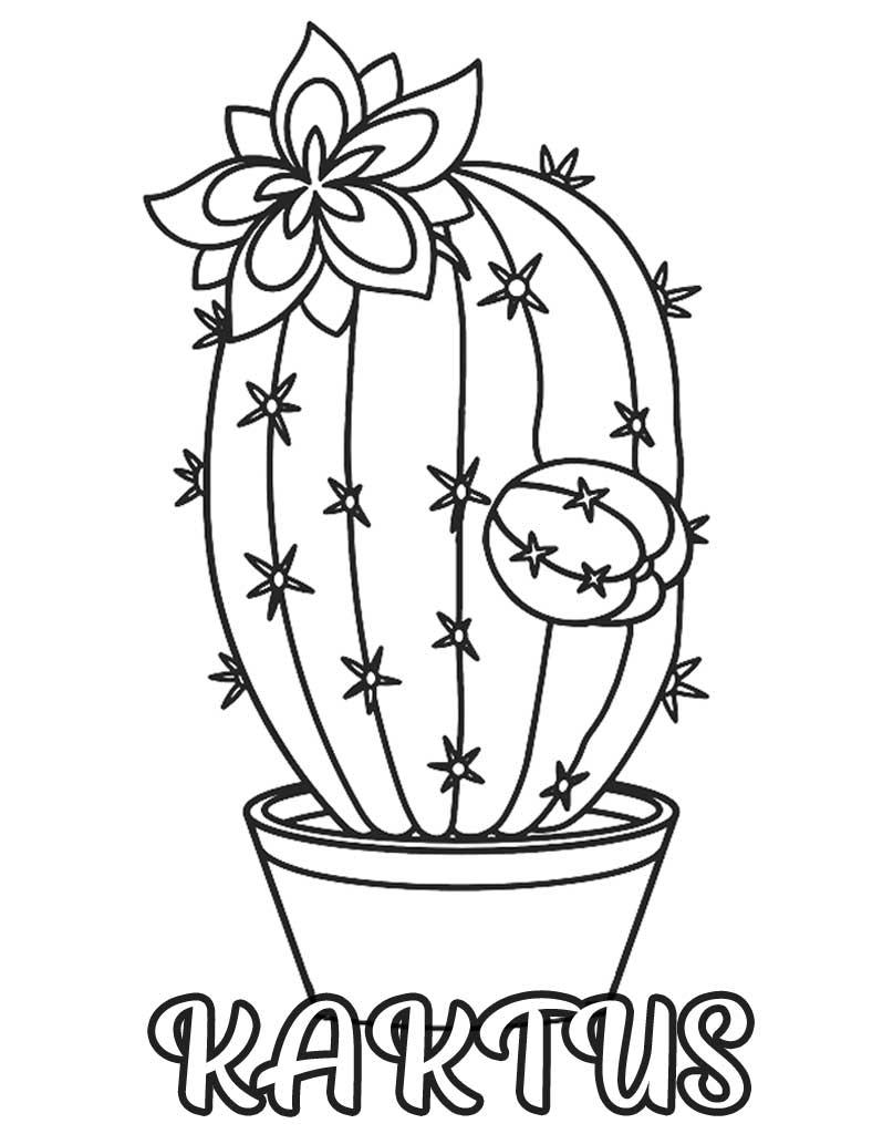 Kaktus kolorowanka