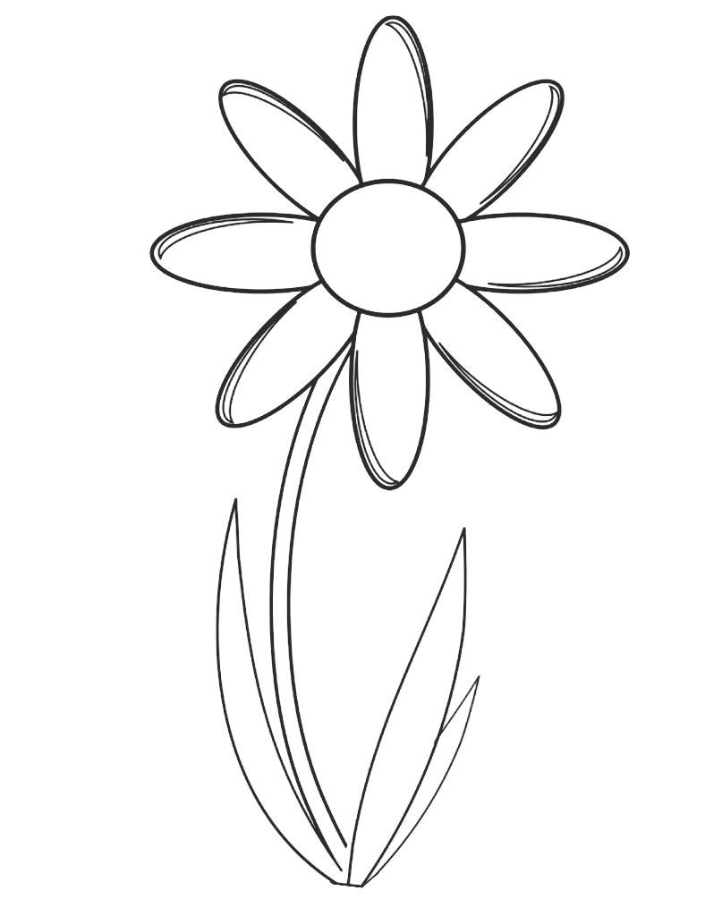 Kolorowanka z pięknym kwiatkiem do druku