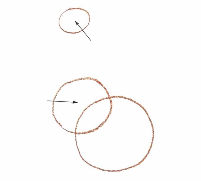 2 Rysowanie kaczki