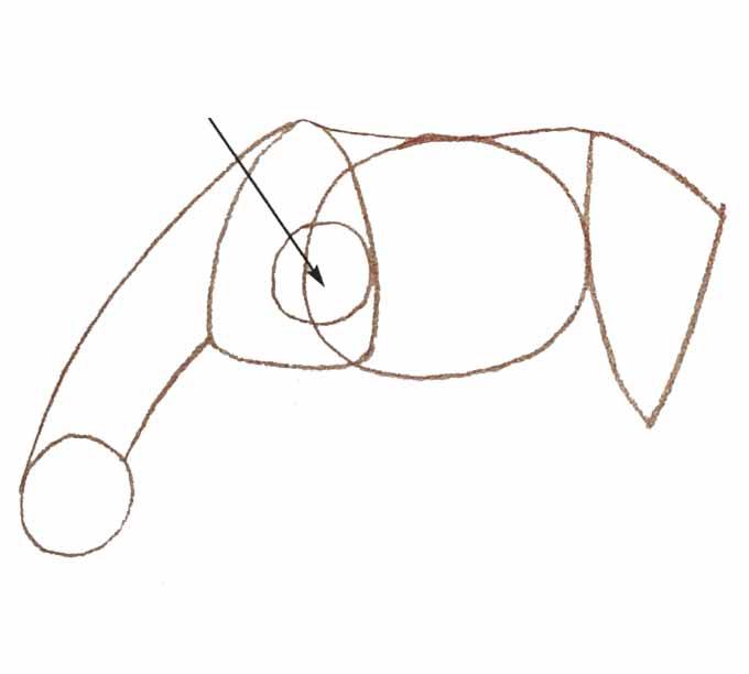 3 Rysowanie konia